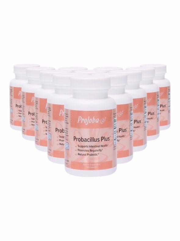 ProJoba Probacillus Plus™ - 60 capsules (12 Pack)